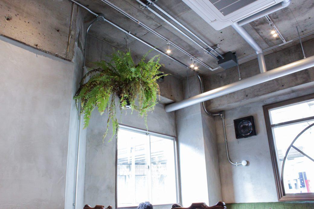パーラーイムオムのコンクリ打ちっぱなしの天井とおしゃれな観葉植物